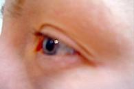Eyeliner övre + nedre, permanent fransböj samt färgning av fransar och bryn - före